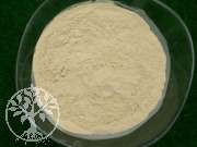 Gemostone Powder