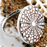 Spider-Shell Rings