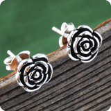 Silver Ear Plugs