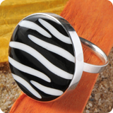 Rings with zebra mussel
