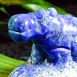 Unique Hippos