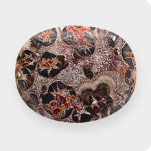 Leopard-Jaspis
