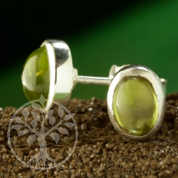 Peridot Ohrstecker oval 9x6mm