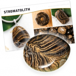 Stromatolit Stein mit Karte über Wirkung/Bedeutung Steineset