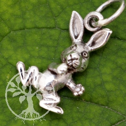 Rabbit Silverpendant