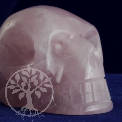 Rose Quartz Crystal Skull in A quality 50mm