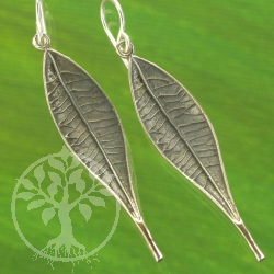 Silver earring 2 willow leaf Earrings Sterling 925