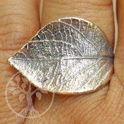 Sterling silver ring 925 Linden leaf
