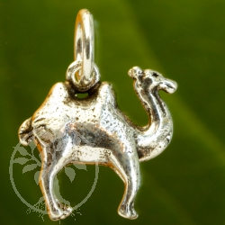 Camel Bactrian silver pendant sterling 925