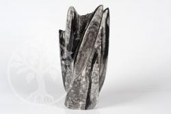 Fossil Versteinerung stehend Orthoceras 19,5cm sp12