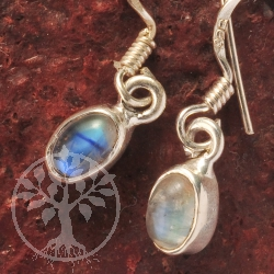 Rainbow Moonstone Silver Earring oval 6x4mm