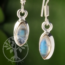 Rainbow Moonstone Silver 925 Earring Navette 8x5mm