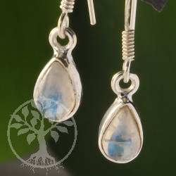 Rainbow Moonstone Silver Earring Drop 9x6mm