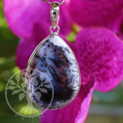 Dendrites Opal in Sterlingilver Pendant