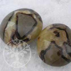 Septarien grosse Steine 1kg Großhandel Handschmeichler 4-6X5-7cm