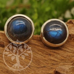 Labradorite Circle Stud Earrings Sterling Silver 925 10mm