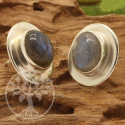 Labradorite Stud Earrings Sterlingsilver925 12x14mm