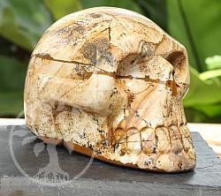 Jasper Landscape Skull A 100/150mm