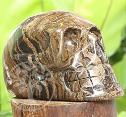 Stromatolith Steinschädel A/A 100/150mm