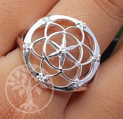 Ring Cubic Zirconia Flower Sterlingsilver 925 22x18mm Size 57