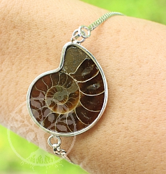 Bracelet With Ammonite Fossil Silver 925 20cm