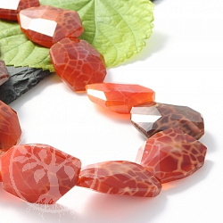 Fire Agate Jewelry Beads Freeform 26mm