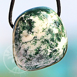 Tree Agate Agate Gemstone Pendant 23x19mm