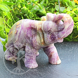 Elephant Fluorit Gemstone 67*47*100mm