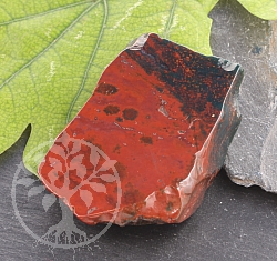 Bloodstone Slices Polished -Lot of Red- About 35mm