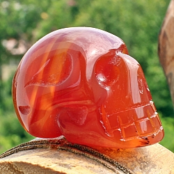 Carnelian Skull Small Gemstone High Quality