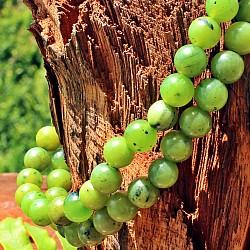 Jade Nephrite Stone Bracelet Round Beads 5 mm