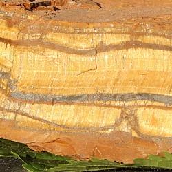Tigerauge Rohstein Mineral ungeschliffen 900Gramm 15x9x3cm
