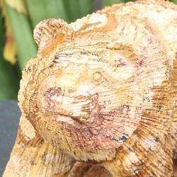 Bär Jaspis Landjaspis fein geschliffen 100x60 mm