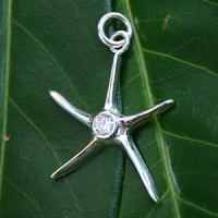 Silver Pendant Star with white zirconia