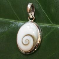 Shiva Shell Pendant  SHAH7