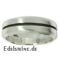Stainless-Steel Ring ER120