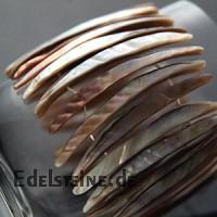 Muschel Armband 8