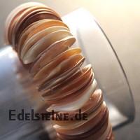 Muschel Armband 11