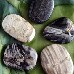 Silver Leaf Jasper handstone 5 Pieces