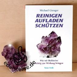 Buch: Reinigen Aufladen Schützen von Michael Gienger