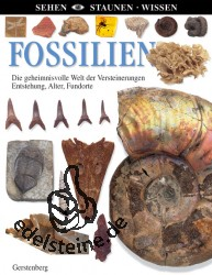 Buch Fossilien