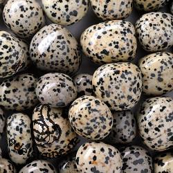 Dalmatiner-Jaspis Trommelsteine 0,5 kg