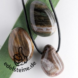 Petrified Wood pendant BIG 3 pieces