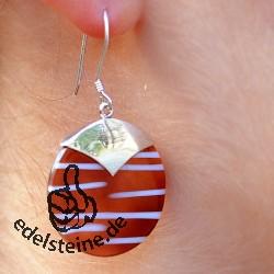 Zebra-Muschel Ohrhänger mit Silber 4