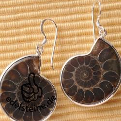 Ammoniten-Ohrhänger gross 25-31mm