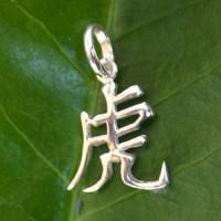 Chinesisches Sternzeichen Tiger Silber Anhänger 925 Echtsilber