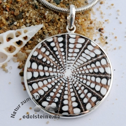 Spider-Shell Pendant with Silver 2