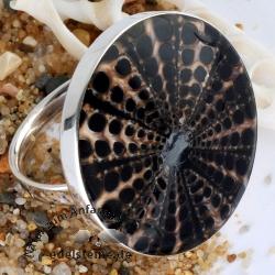 Spider-Muschel Ring mit Silber 6