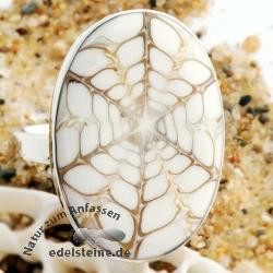 Spider Muschel Ring oval mit Silber 7