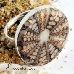 Spider-Muschel Ring mit Silber 9